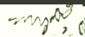 [ocr errors][subsumed]