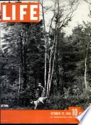 29 Oct 1945